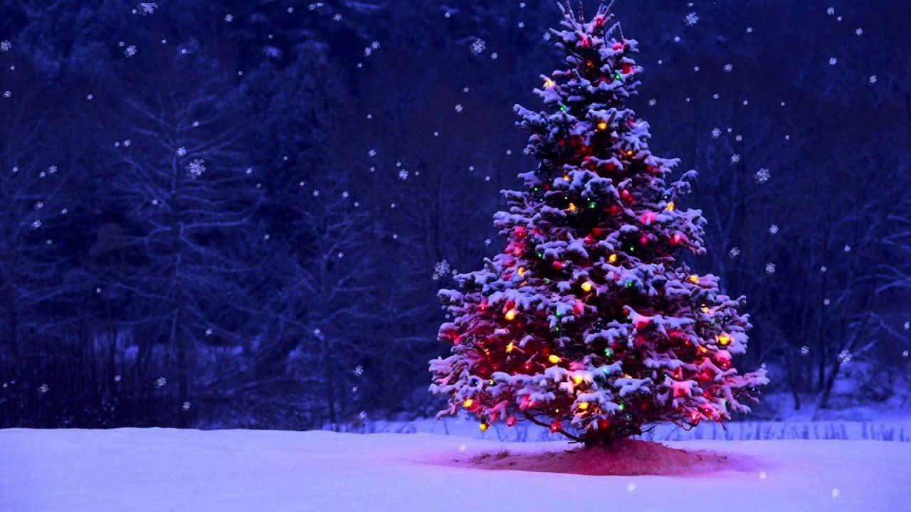 Kumkikna Lamen Innkuan - Khenpi 77 -Christmas By Ellen G White, Adventist Home